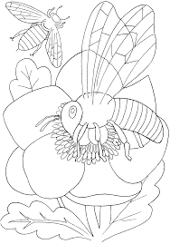 insect for kids coloring page free download