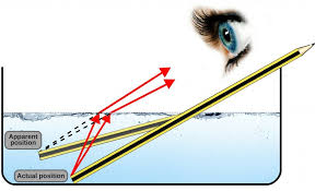 Light Is Not Refracted When It Is Why Is It So Difficult To See Underwater Science Abc