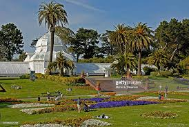 Golden Gate Botanical Garden Usa California San Francisco Golden Gate Park Sf Botanical Gardens