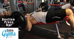 Bench Press Weight For Beginners Chest Workout For Beginners Cairo Gyms