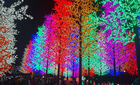 updates on bio luminescent trees and glowing plants show not