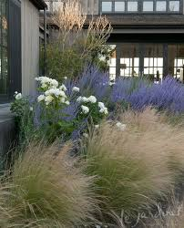 color and pattern using ornamental grass and lavender