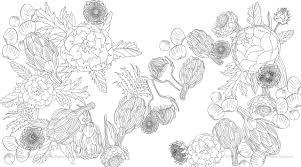 amazon com edible paradise a coloring book of seasonal fruits