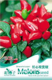 compare prices on seeds pepper ornament shopping buy low