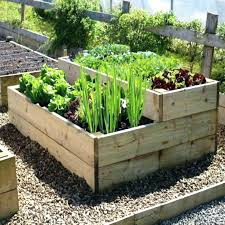 kitchen gardens design vegetable garden design ideas kitchen garden design incredible small