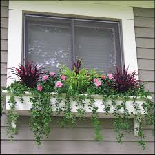choices of window box planters front yard landscaping ideas