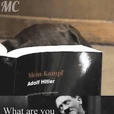 Jew Meme - oh jew meme lekton info
