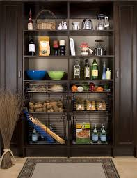 Kitchen Cabinet Pantry Ideas by Kitchen Modern Pantry Ideas Pantry Ideas For Small Spaces