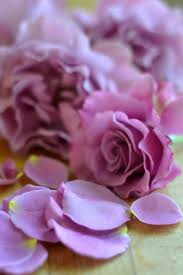 Lavender Roses How To Make Homemade Lavender And Rose Simple Syrups The View