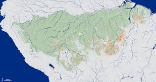 Amazon World Map by News Hidden Wildfires Taking Big Toll On Amazon Rainforest