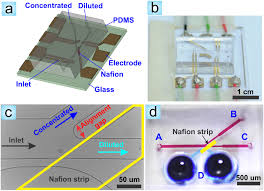 fabrication of nanoporous junctions using off the shelf nafion