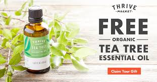 the best deal yet snag this organic tea tree essential for
