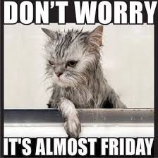 Almost Friday Meme - dont worry its almost friday day thursday quotes almost friday its