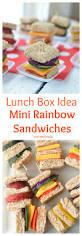 lunch box idea mini rainbow sandwiches healthy ideas for kids