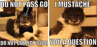 Hipster Cat Meme - i used to be scared of cats hamilton the hipster cat animals