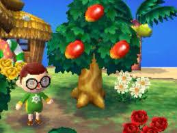 image mangos jpg animal crossing wiki fandom powered by wikia