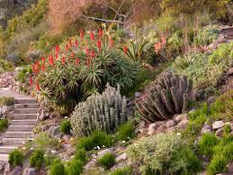 Quail Botanical Gardens Free Tuesday Golden Gate Audubon Societybirding Hotspot U C Botanical Garden