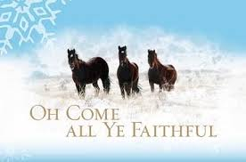 order christmas cards aqha order your christmas cards today