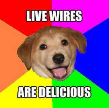 Advice Dog Meme Generator - m e a n i n g online 5