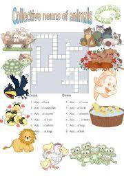 collective nouns собирательные существительные animal