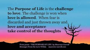 Challenge Purpose What Is The Purpose Of Messages From The Within