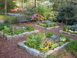 Small Raised Bed Vegetable Gardens Garden Raised Bed Vegetable Garden Designs Best Veggie Garden Layout
