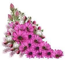 decoration flowers flowers bouquet decoration free image on pixabay
