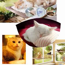 best high quality cat window mounted bed 22 12 sunny seat pets