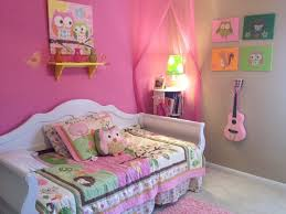 Themed Bedrooms For Girls Best 25 Owl Bedroom Girls Ideas On Pinterest Owl Bedrooms