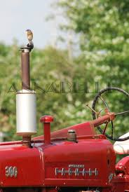 180 best farmall images on pinterest international harvester