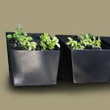 wall mounted planter horizontal wall mounted planter box u2013 green wall type u2013 greenergy