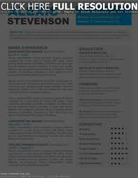 Full Resume Template Resume Templates For Mac Word 89 Extraordinary Word Resume