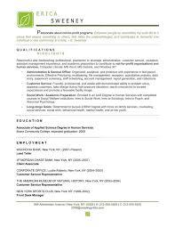 Non Profit Resume Samples Non Profit Resume Sample Resume Summary Statement Examples