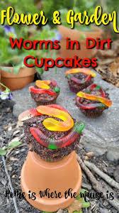 best 25 worms in dirt ideas on pinterest dirt cups oreo dirt