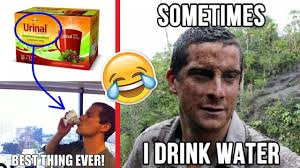 Meme Bear Grylls - best funny bear grylls jokes memes youtube