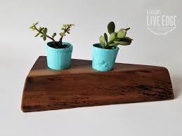 succulent planter cacti planter pots live edge walnut wood