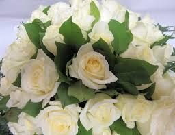bouquet de fleurs roses blanches de roses blanches
