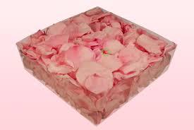 Rose Petals Freeze Dried Rose Petals Confetti And Preserved Roses U0026 Rose Petals