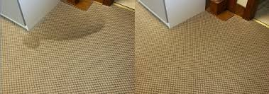 eco friendly home decor interesting eco friendly carpet cleaner to decorate your home