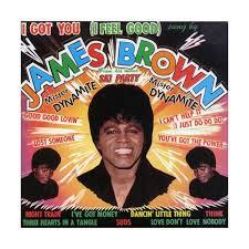 James Brown Meme - media mp3 downloader james brown i got you i feel good mp3