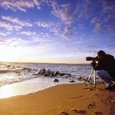 Maryland beaches images Best 25 maryland beaches ideas ocean city beach jpg