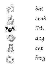 phonics initial consonant blend pr ccvc words presentations