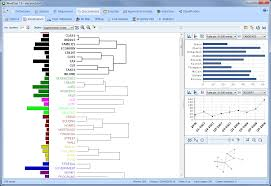 wordstat for stata content analysis and text mining tool