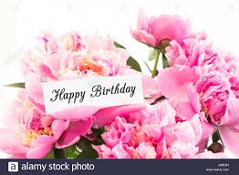 where to buy peonies happy birthday card with bouquet of pink peonies on white stock