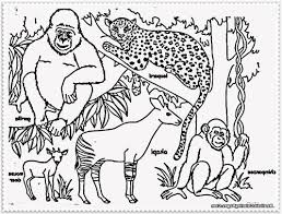 sketch of the animals in the jungle drawing of sketch