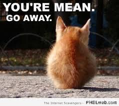 Mean Cat Memes - 11 you re mean cat meme pmslweb