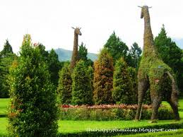 Horse Topiary 21 Best Beatles Statues Sculptures U0026 Public Art Liverpool