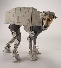 Star Wars Halloween Costumes 76 Homemade Star Wars Images Starwars