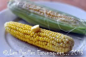 cuisiner des epis de mais québec maïs doux sur épi les papilles estomaquées les