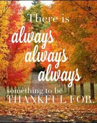 114 best thanksgiving ideas images on autumn